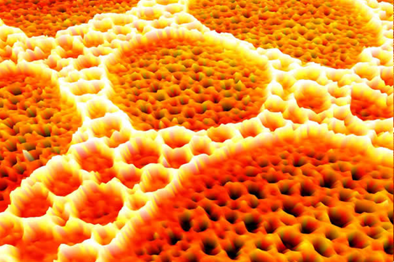 Microscopy-image2